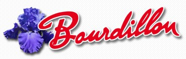 Bourdillon